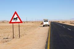 Wild paarden die de woestijn van verkeerstekenaus, Namibië waarschuwen Royalty-vrije Stock Fotografie