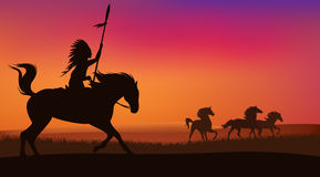 Wild paarden en Indiër Royalty-vrije Stock Foto
