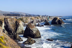 Wild pacific coast Stock Photography