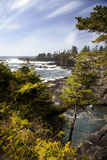 Wild Pacific Trail. Seascape in Ucluelet Stock Photo