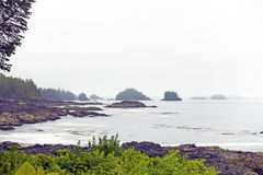 Wild pacific trail Royalty Free Stock Images