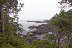 Wild pacific trail Royalty Free Stock Image