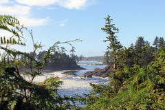 Wild Pacific Trail, Vancouver Island, BC Stock Images