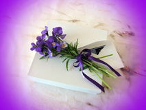 Wild pansy and envelope on gift box Stock Photos