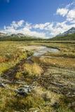 Patagonia ,argentina royalty free stock image
