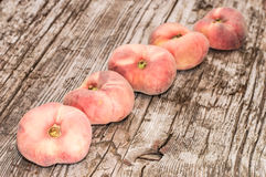 Wild Peaches in a row Stock Image