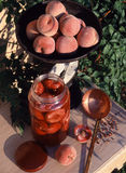 Wild peaches stewed in ros  wine Stock Photography