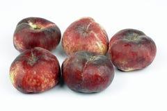 Wild peaches Stock Images