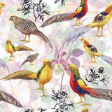 Wild Pheasant animals birds in watercolor floral seamless pattern Stock Photos