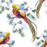 Wild Pheasant animals birds in watercolor floral seamless pattern Royalty Free Stock Image
