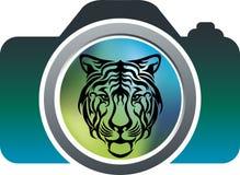 Wild photography design Stock Photos