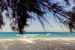 Wild picturesque beach Royalty Free Stock Images