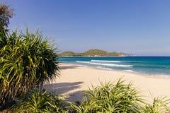 Wild picturesque beach Stock Images