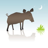 Wild pig. Vector wild boar cartoon character. Pig in the forest Royalty Free Stock Image