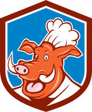 Wild Pig Boar Chef Cook Head Shield Cartoon Stock Image