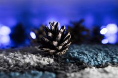 Wild Pine Cone Wintry Display. Wild Pine Cone Close up Wintry Display with Lights Stock Photography