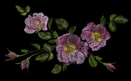 Wild pink rose embroidery crewel. Fashion closing decoration dog rose delicate white vintage color. Blooming flower blossom  Stock Photos