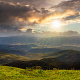 Wild plants at the mountain top at sunset Stock Photography