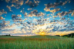 Wild poppies field and beautiful sunrise cloudy sky Stock Photography