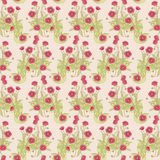Wild poppy pattern. Seamless red wild poppy pattern Stock Photography