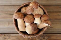 Wild porcini mushrooms in handmade wicker basket on wooden backg Stock Photography