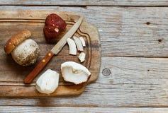 Wild porcino mushrooms Stock Photos