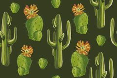 Watercolor desert set `Cacti pattern` green background. In the wild prairies you will meet these succulents. An excellent pattern for the background. It was Royalty Free Stock Photography