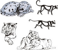 Wild Predator Cats Set. Set of wild predator cats. Vector illustrations Royalty Free Stock Photography