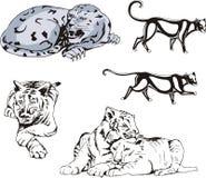 Wild Predator Cats Set Royalty Free Stock Photography