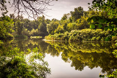 Wild and pristine nature of Europe Stock Images