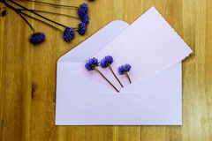 Wild purple flowers with pink envelop on wooden background. Flat lay. Top view. Royalty Free Stock Image