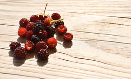 Wild Raspberries Royalty Free Stock Images