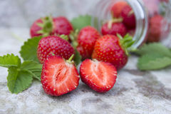 Wild red strawberry with green leaf Royalty Free Stock Images