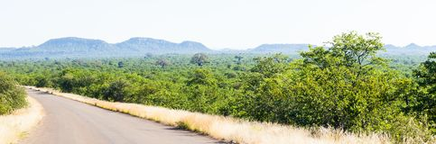 The wild and remote area of the north kruger park, South Africa. stock image
