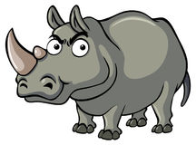Wild rhino with serious face Royalty Free Stock Images