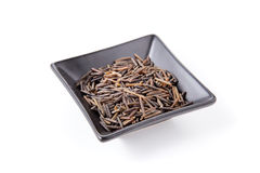 Wild  rice Stock Photos
