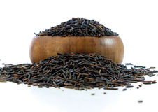 Wild rice Stock Images