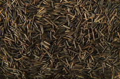Wild Rice. A background image of wild rice grains Royalty Free Stock Photos