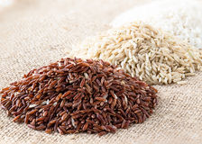 Wild rice, brown rice and white rice Royalty Free Stock Images
