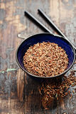 Wild rice in ceramic bowl Stock Image
