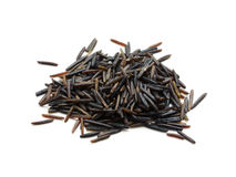 Wild rice isolated royalty free stock images