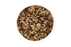 Wild rice mix Royalty Free Stock Photo