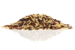 Wild rice mix Stock Image