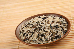 Wild rice in plate Stock Image