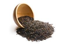 Wild rice Stock Image