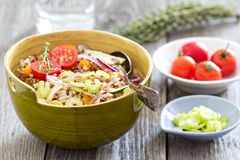 Wild rice salad with vegetables Royalty Free Stock Photos