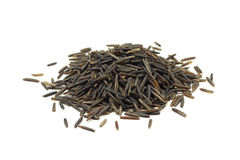 Wild rice seeds Royalty Free Stock Images