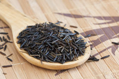 Wild rice spoon Stock Photography