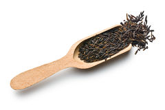 Wild rice on wooden scoop Royalty Free Stock Image