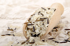 Wild rice on wooden shovel Royalty Free Stock Photography